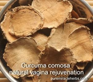 curcuma comosa vagina tightening herb